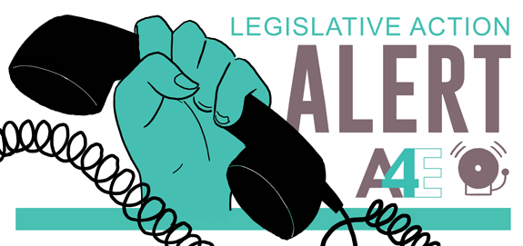 Legislative Action Alert Act To Provide >> Alert End The End Act Stop Ice Collaboration Athens For Everyone